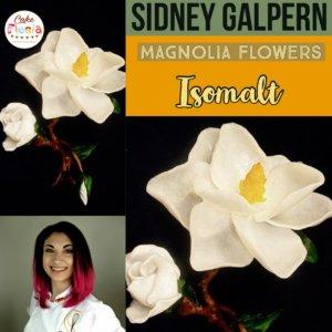 magnolia_class